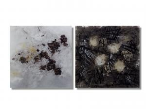 Photo/Painting Correspondence – <b>Baldenau 2.2  (diptych)</b>, C-Print/Diaplex and painting on acrylic glass, each 50 x 50 x 2 cm, 2013