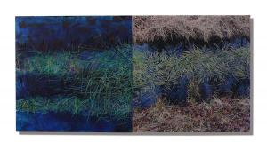 Photo/Painting Correspondence – <b>Engbertsdijksvenen 1.1  (diptych)</b>, Painting and C-Print/Diaplex on acrylic glass, each 50 x 50 x 2 cm, 2011