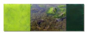 Photo/Painting Correspondence – <b>Kildony Point (triptych)</b>, C-Print/Diaplex and painting on acrylic glass, total 50 x 150 x 2 cm, 2012