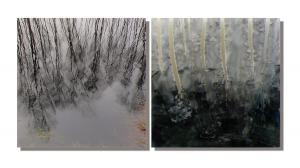Photo/Painting Correspondence – <b>WasserBäume (diptych)</b>, C-Print/Diaplex and painting on acrylic glass, each 50 x 50 x 2 cm, 2011